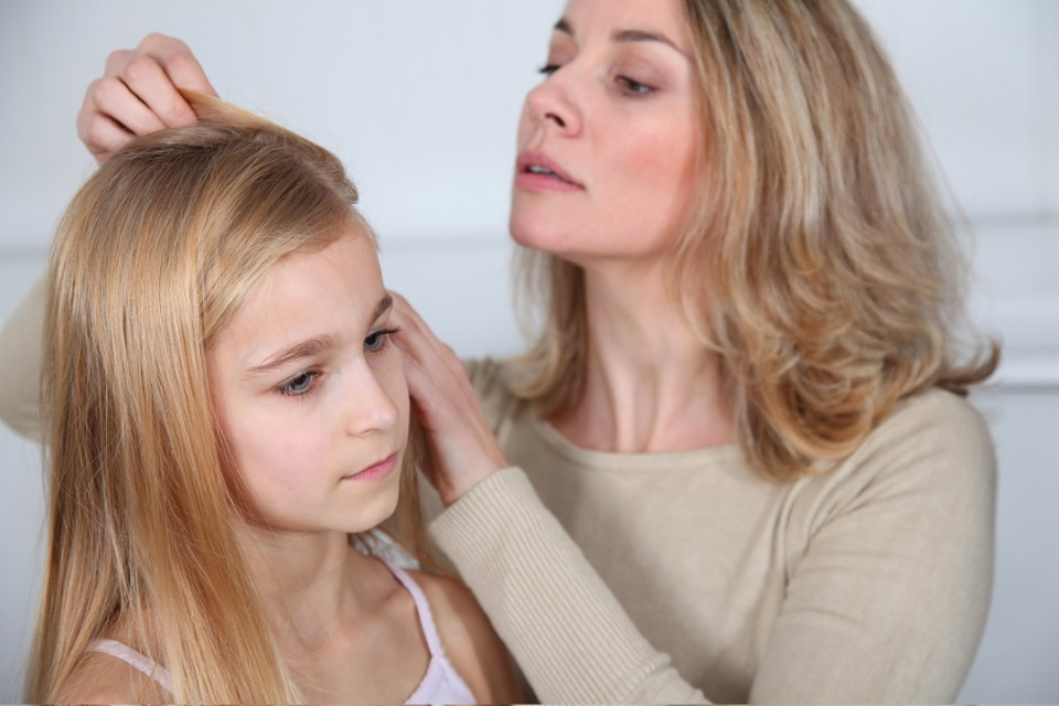 How to Deal with Head Lice | Laval Families Magazine | Laval's Family Life Magazine