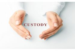 Shared Custody for Toddlers