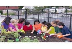 Combining Nature with Nurture at Genesis Elementary