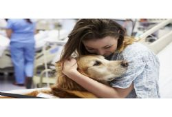 Pets and Teens: Together for Mental Health