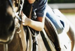 Therapeutic Horseback Riding: A Viable Option